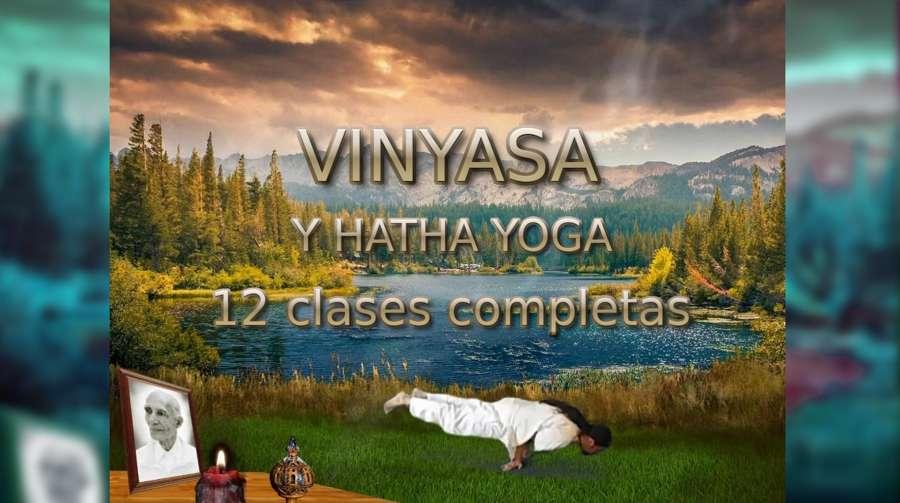 Vinyasa y Hatha Yoga